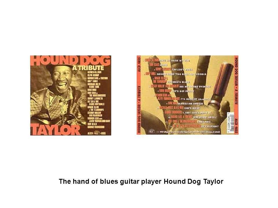 The hand of blues guitar player Hound Dog Taylor