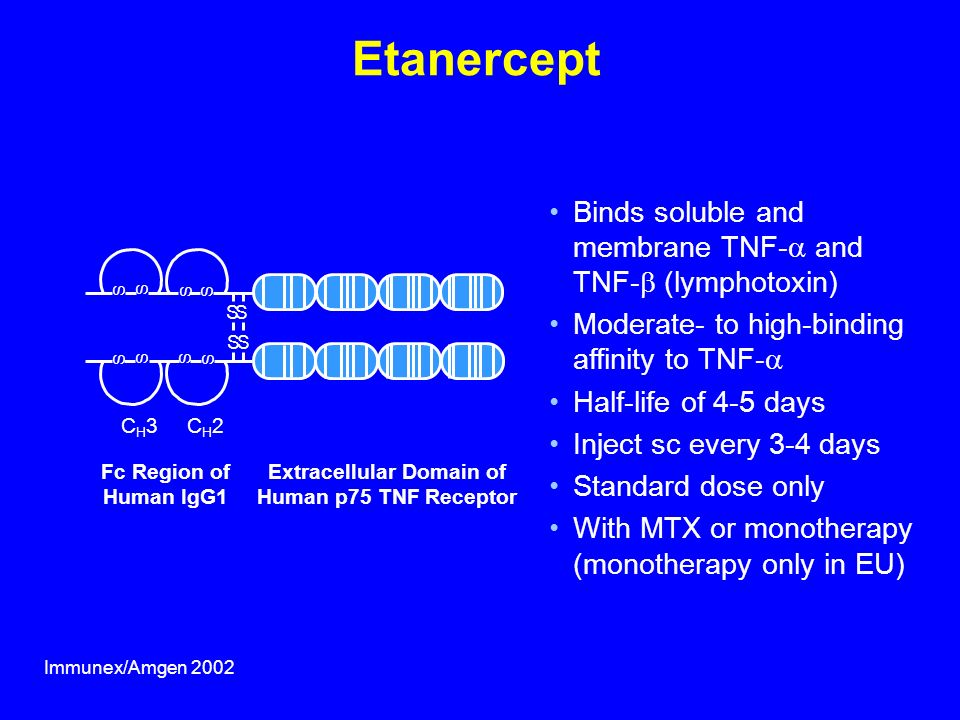 Extracellular Domain of