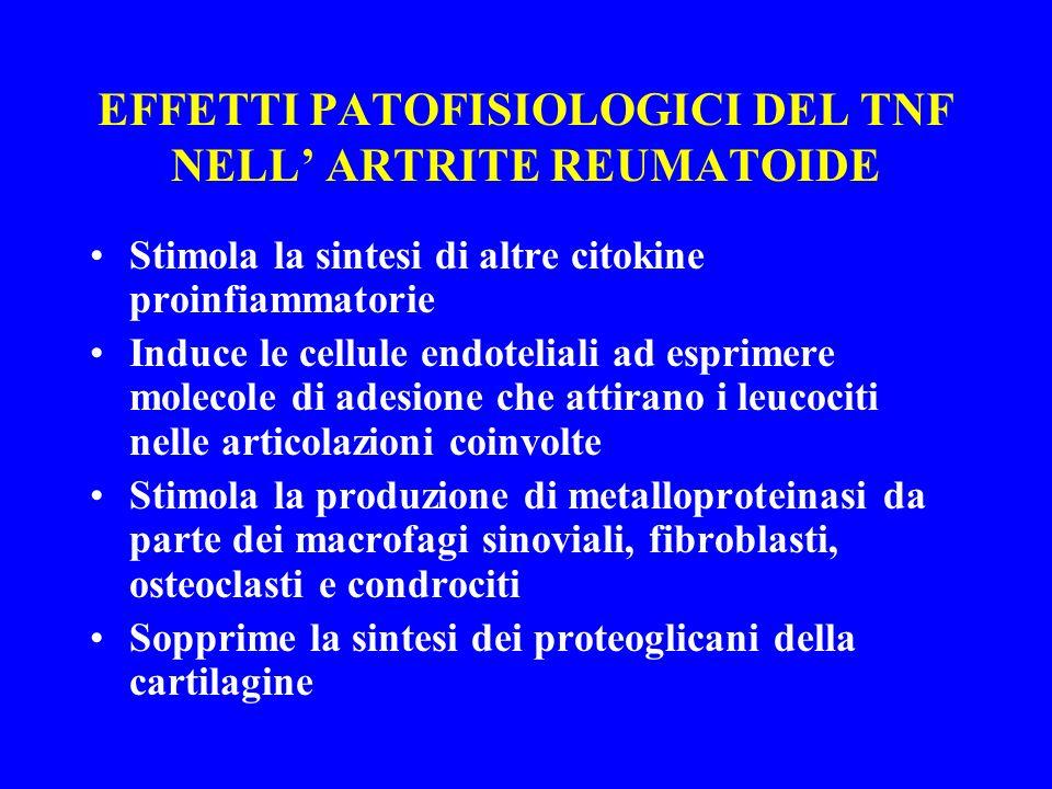 EFFETTI PATOFISIOLOGICI DEL TNF NELL' ARTRITE REUMATOIDE