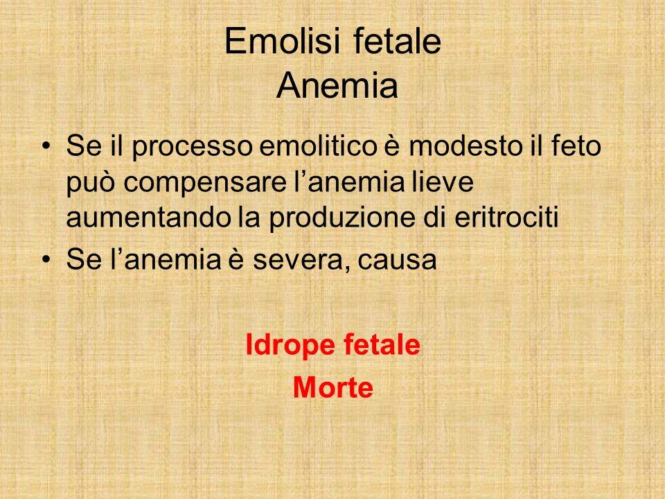Emolisi fetale Anemia Se il processo emolitico è modesto il feto può compensare l'anemia lieve aumentando la produzione di eritrociti.
