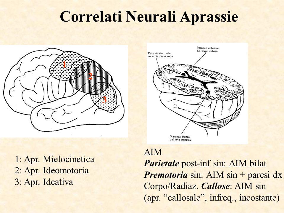 Correlati Neurali Aprassie