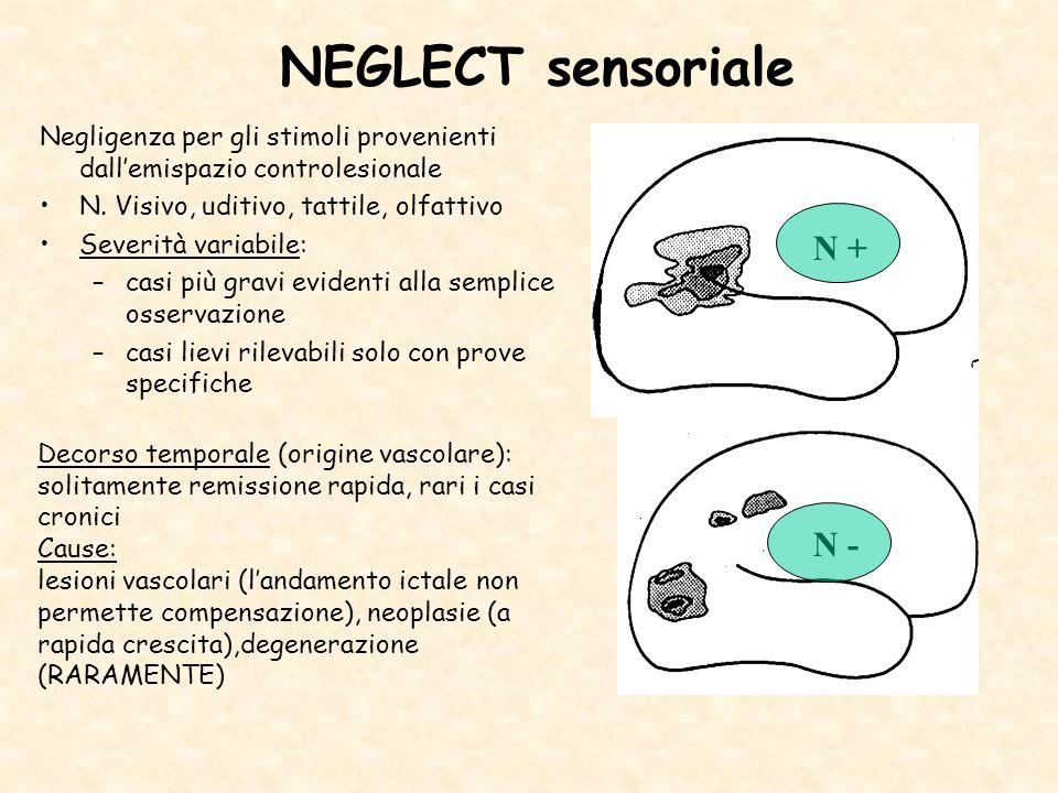 NEGLECT sensoriale N + N -