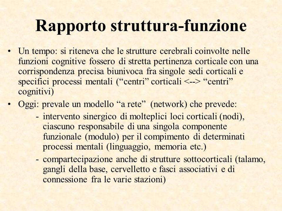 Rapporto struttura-funzione