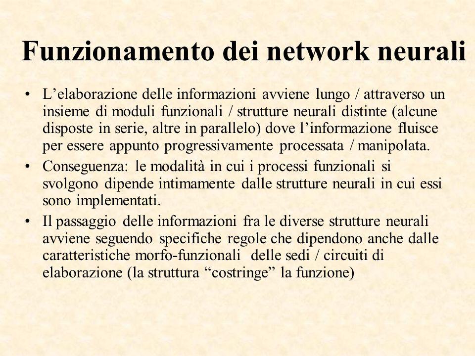 Funzionamento dei network neurali
