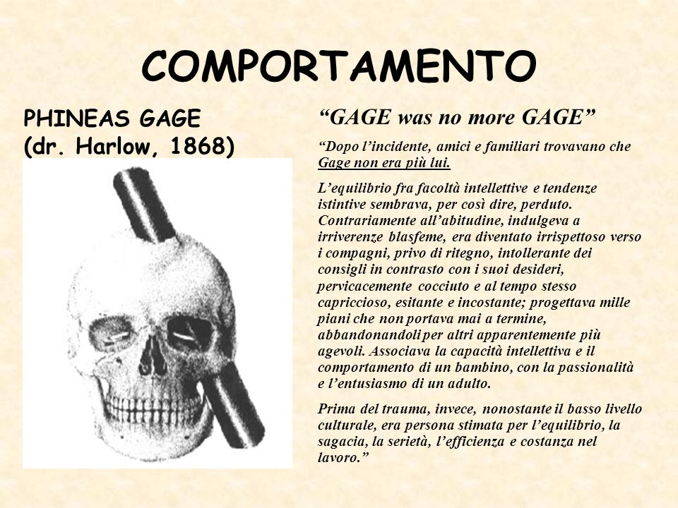 COMPORTAMENTO PHINEAS GAGE (dr. Harlow, 1868) GAGE was no more GAGE