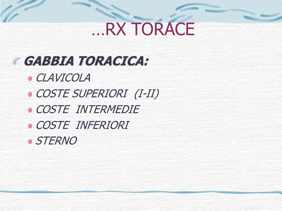 …RX TORACE GABBIA TORACICA: CLAVICOLA COSTE SUPERIORI (I-II)