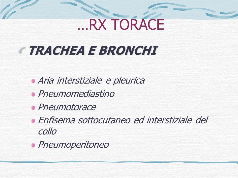 …RX TORACE TRACHEA E BRONCHI Aria interstiziale e pleurica