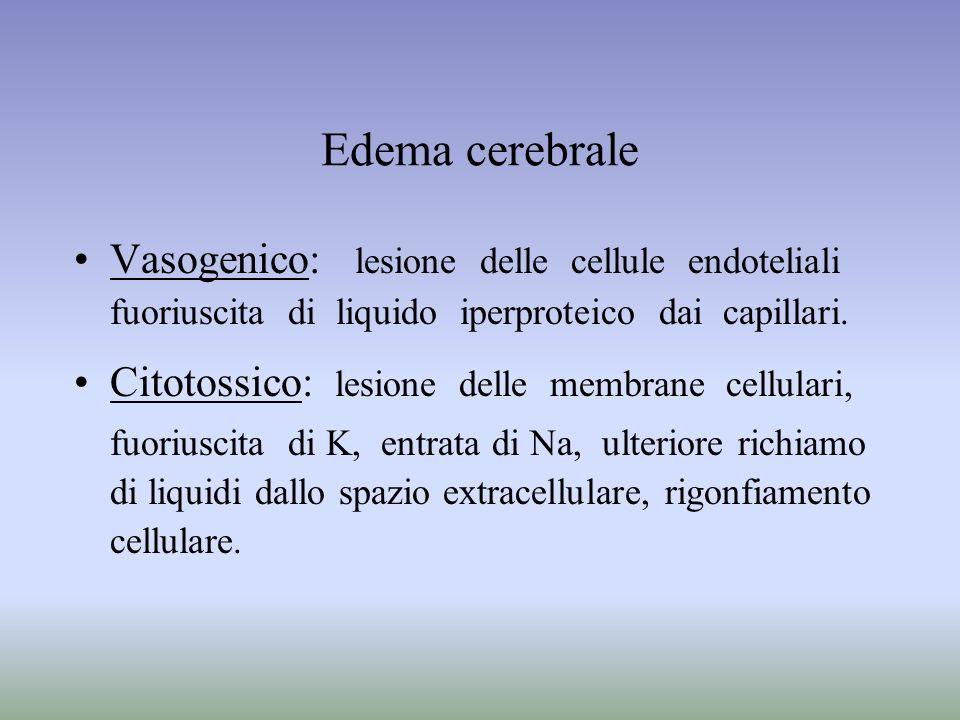 Edema cerebrale Vasogenico: lesione delle cellule endoteliali
