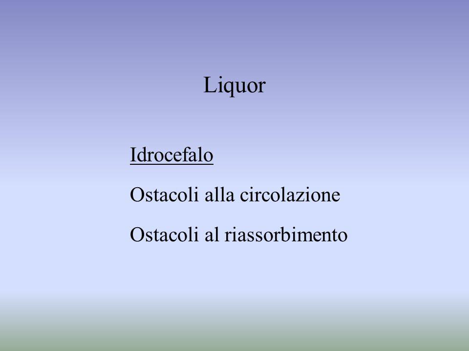Liquor Idrocefalo Ostacoli alla circolazione
