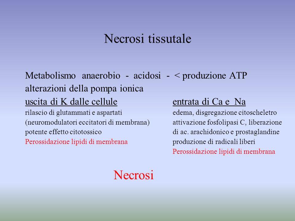 Necrosi tissutale Necrosi