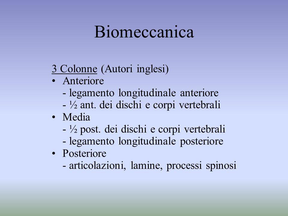 Biomeccanica 3 Colonne (Autori inglesi) Anteriore