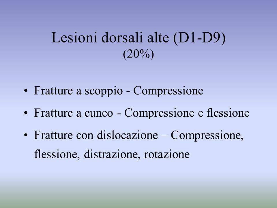 Lesioni dorsali alte (D1-D9) (20%)