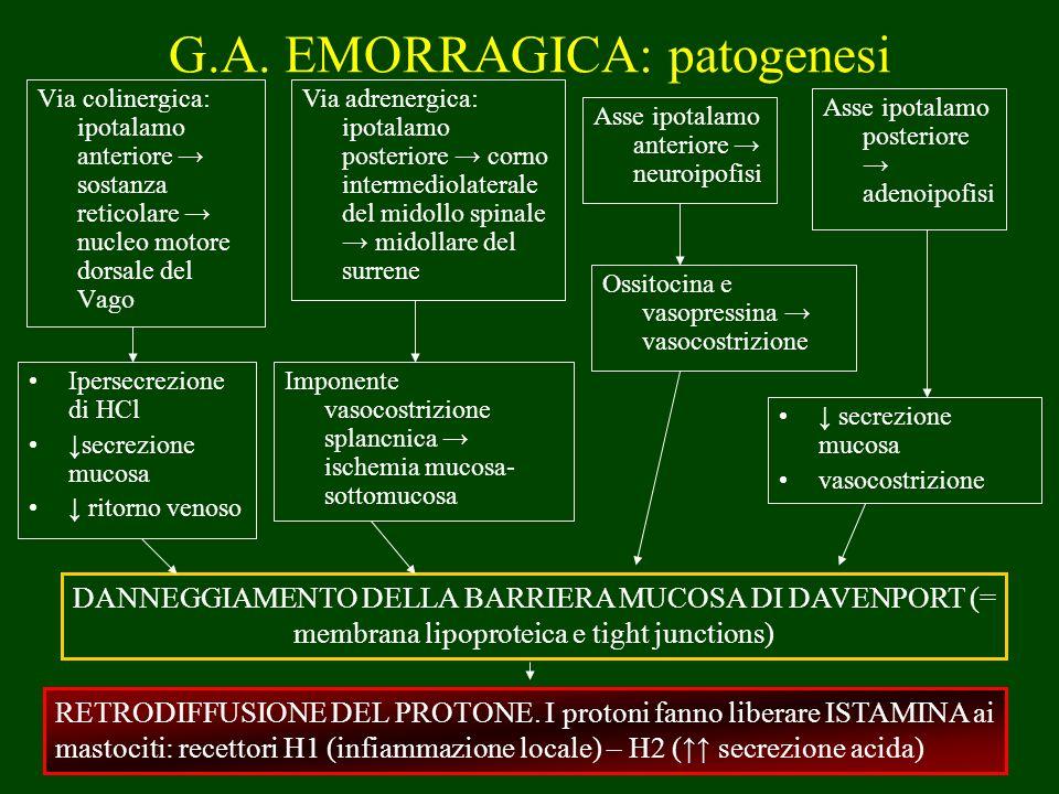 G.A. EMORRAGICA: patogenesi