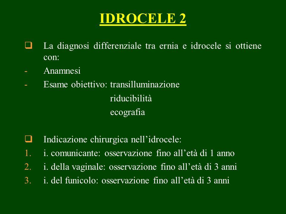 IDROCELE 2 La diagnosi differenziale tra ernia e idrocele si ottiene con: Anamnesi. Esame obiettivo: transilluminazione.
