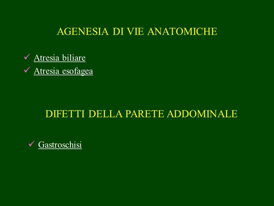 AGENESIA DI VIE ANATOMICHE