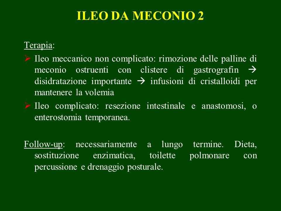 ILEO DA MECONIO 2 Terapia: