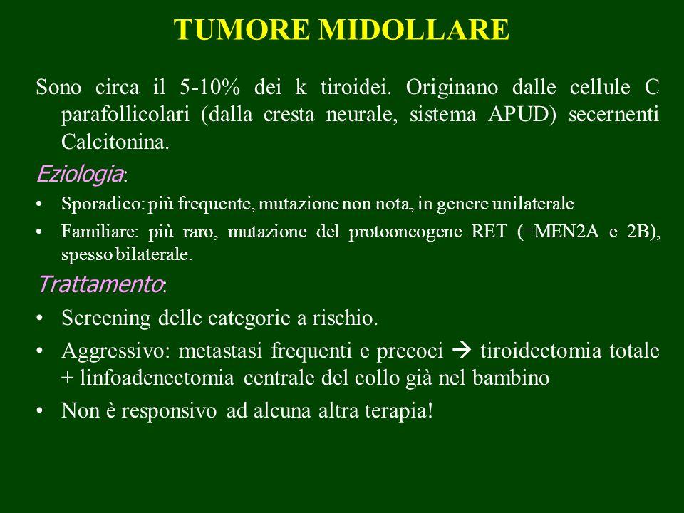 TUMORE MIDOLLARE