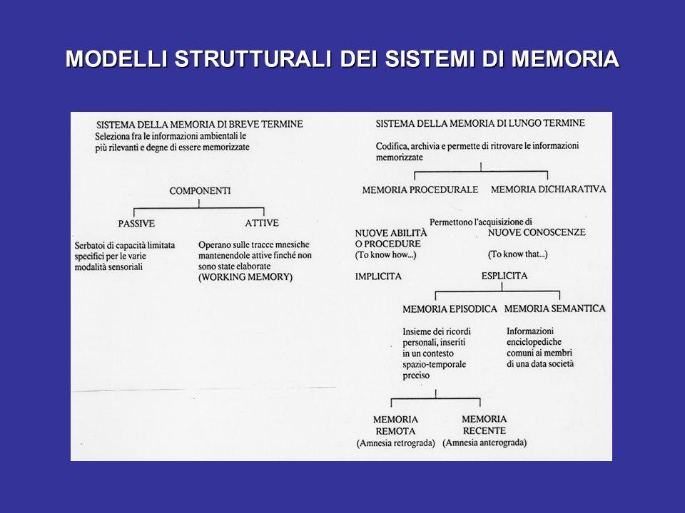 MODELLI STRUTTURALI DEI SISTEMI DI MEMORIA