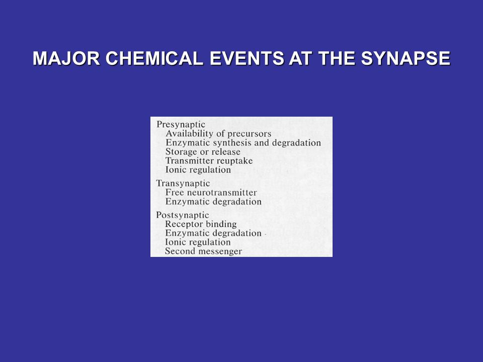 MAJOR CHEMICAL EVENTS AT THE SYNAPSE