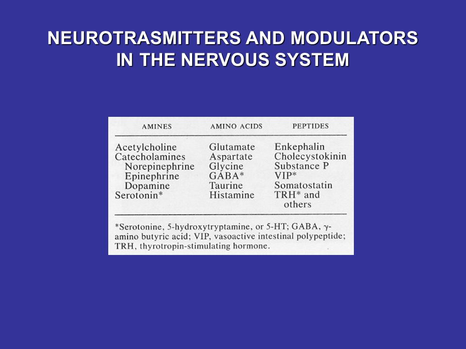 NEUROTRASMITTERS AND MODULATORS IN THE NERVOUS SYSTEM