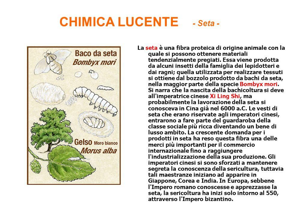 CHIMICA LUCENTE - Seta -