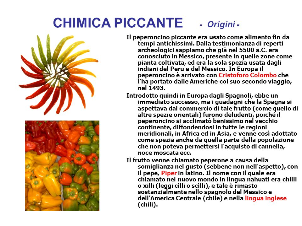 CHIMICA PICCANTE - Origini -
