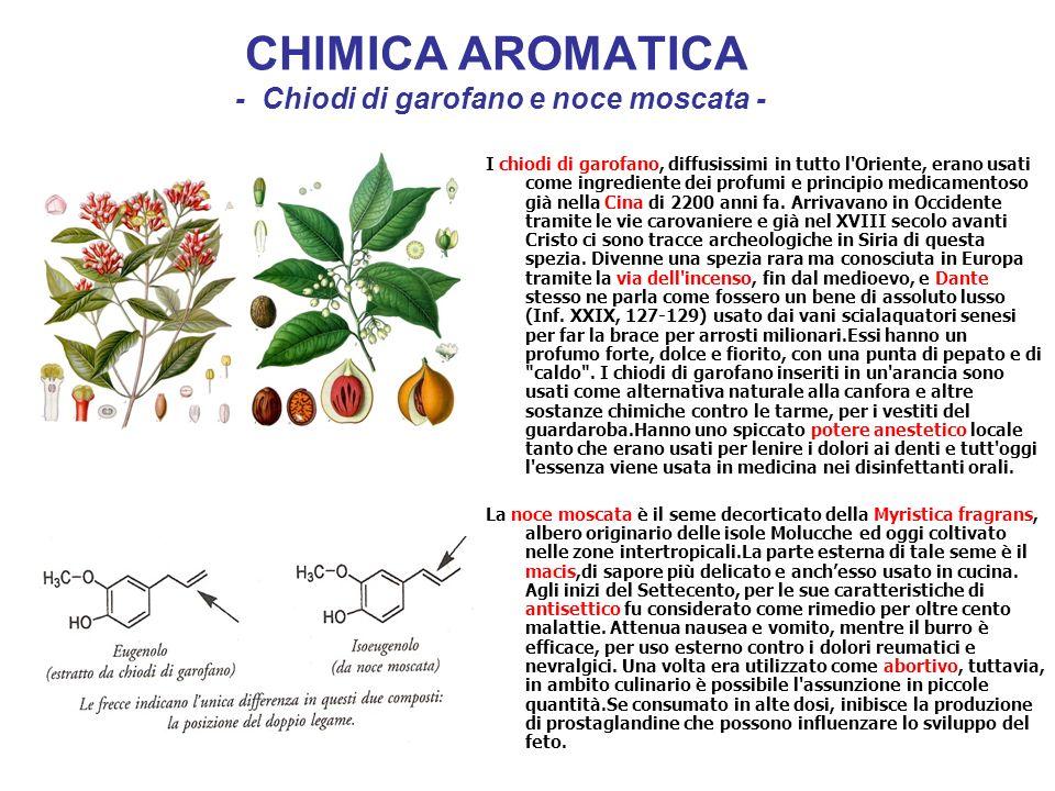 CHIMICA AROMATICA - Chiodi di garofano e noce moscata -
