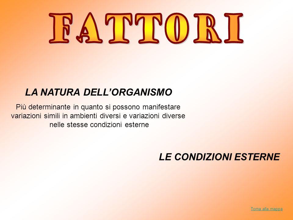 FATTORI LA NATURA DELL'ORGANISMO LE CONDIZIONI ESTERNE