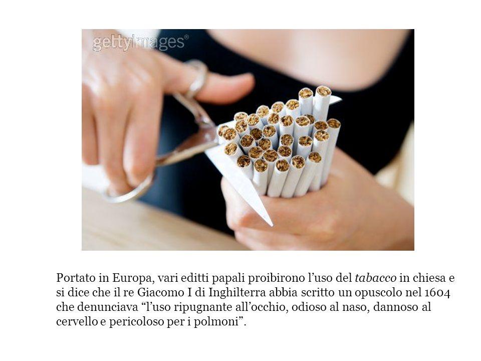 Portato in Europa, vari editti papali proibirono l'uso del tabacco in chiesa e si dice che il re Giacomo I di Inghilterra abbia scritto un opuscolo nel 1604 che denunciava l'uso ripugnante all'occhio, odioso al naso, dannoso al cervello e pericoloso per i polmoni .