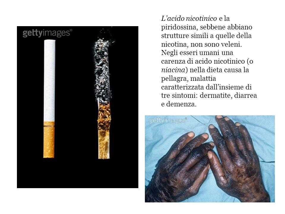 L'acido nicotinico e la piridossina, sebbene abbiano strutture simili a quelle della nicotina, non sono veleni.