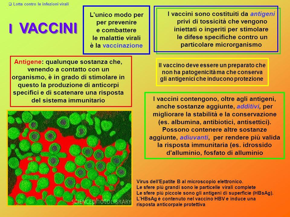 I VACCINI L'unico modo per I vaccini sono costituiti da antigeni