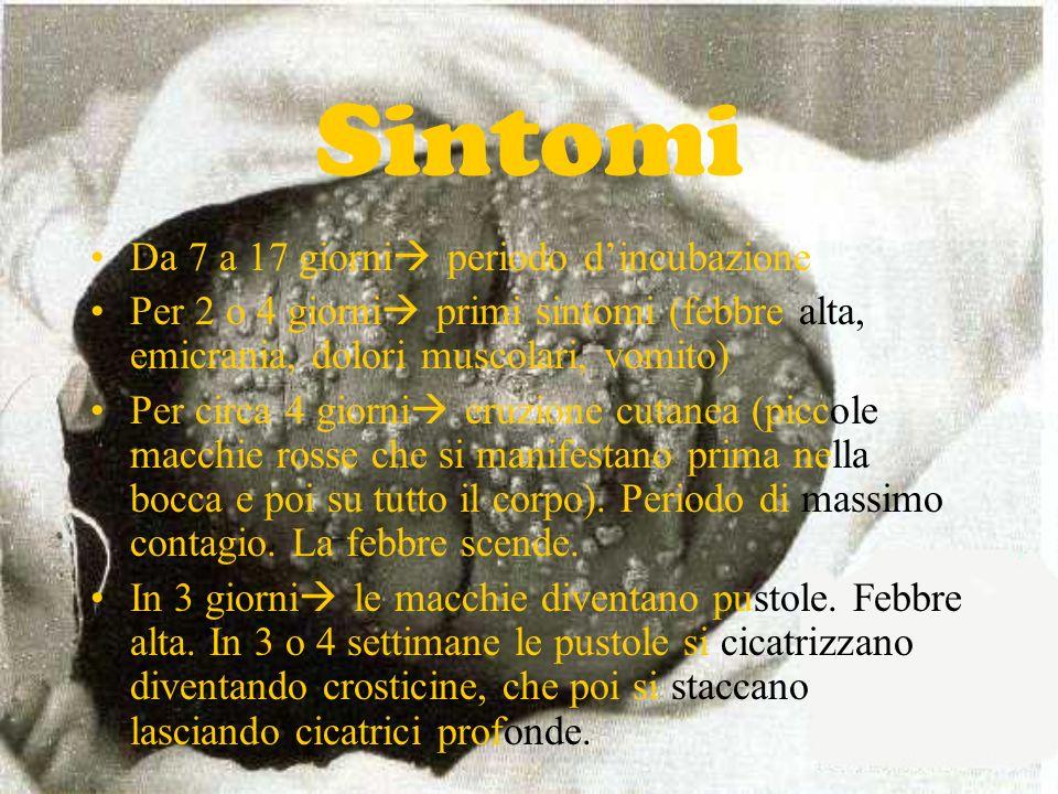 Sintomi Da 7 a 17 giorni periodo d'incubazione