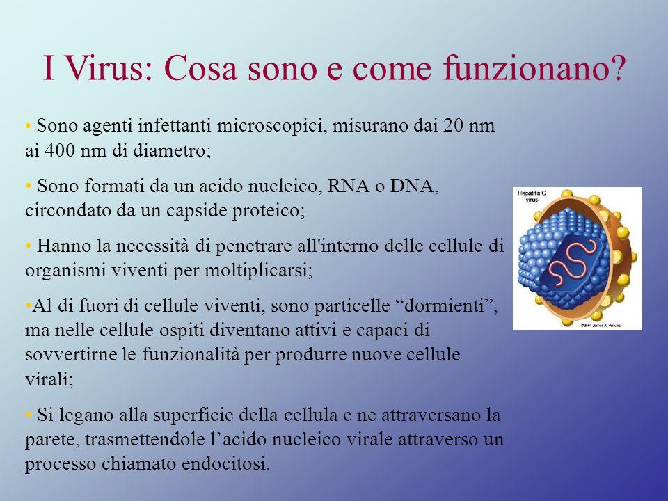I Virus: Cosa sono e come funzionano