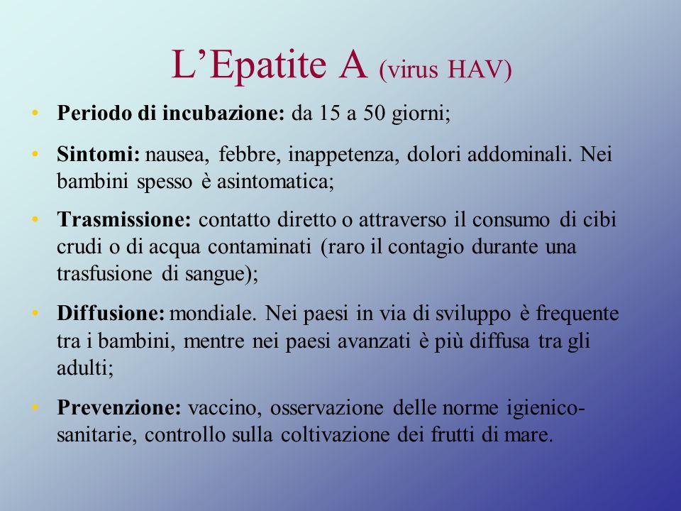 L'Epatite A (virus HAV)