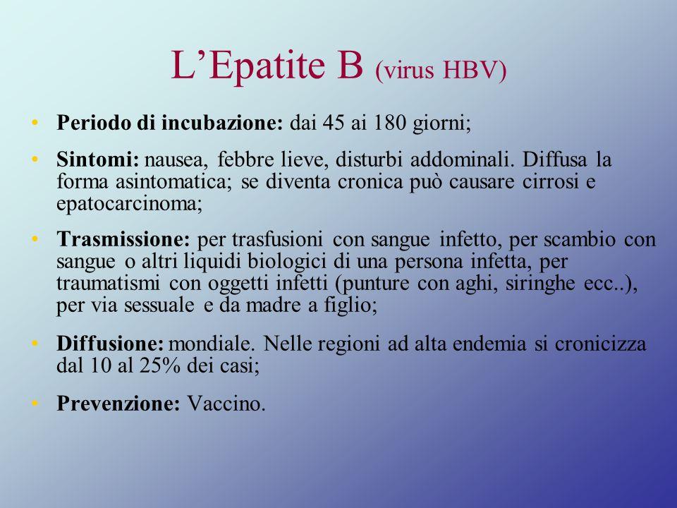 L'Epatite B (virus HBV)