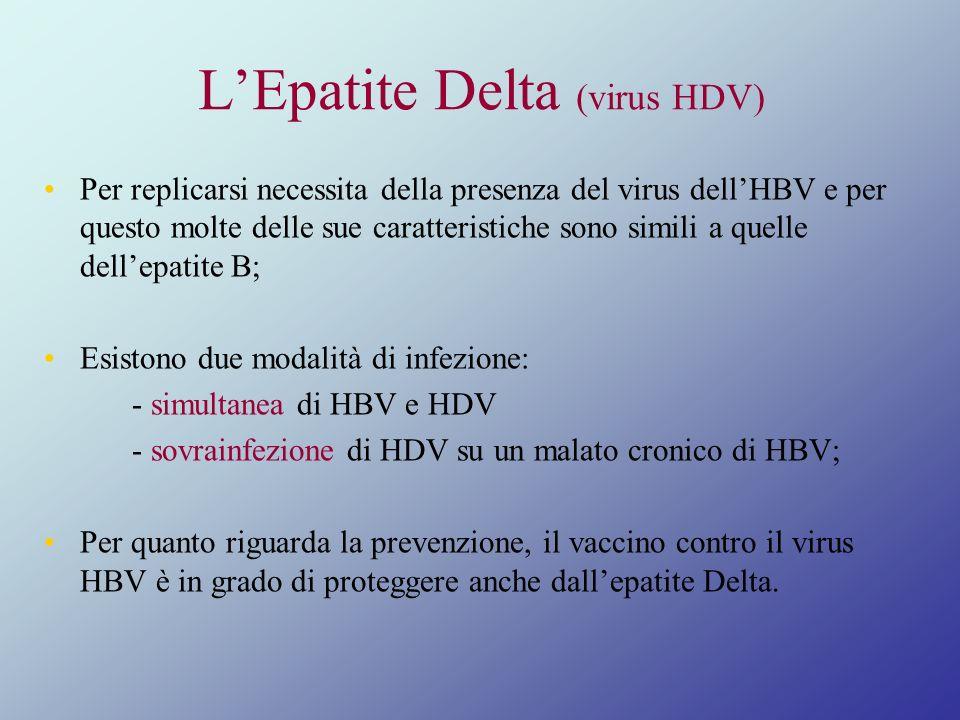 L'Epatite Delta (virus HDV)