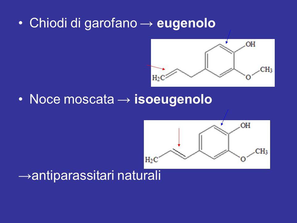 Chiodi di garofano → eugenolo