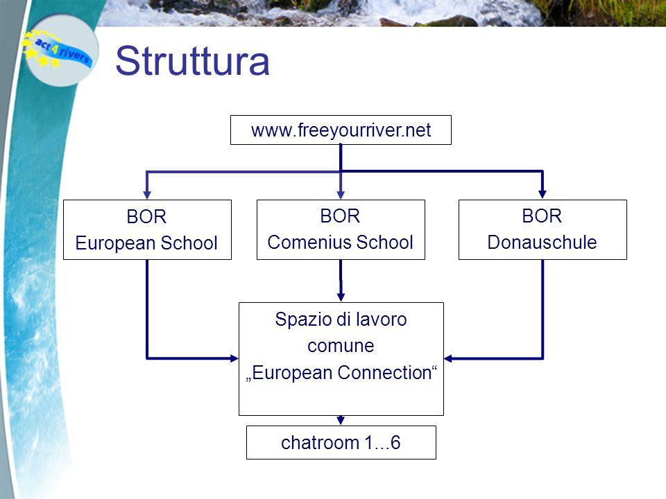 Struttura www.freeyourriver.net BOR European School