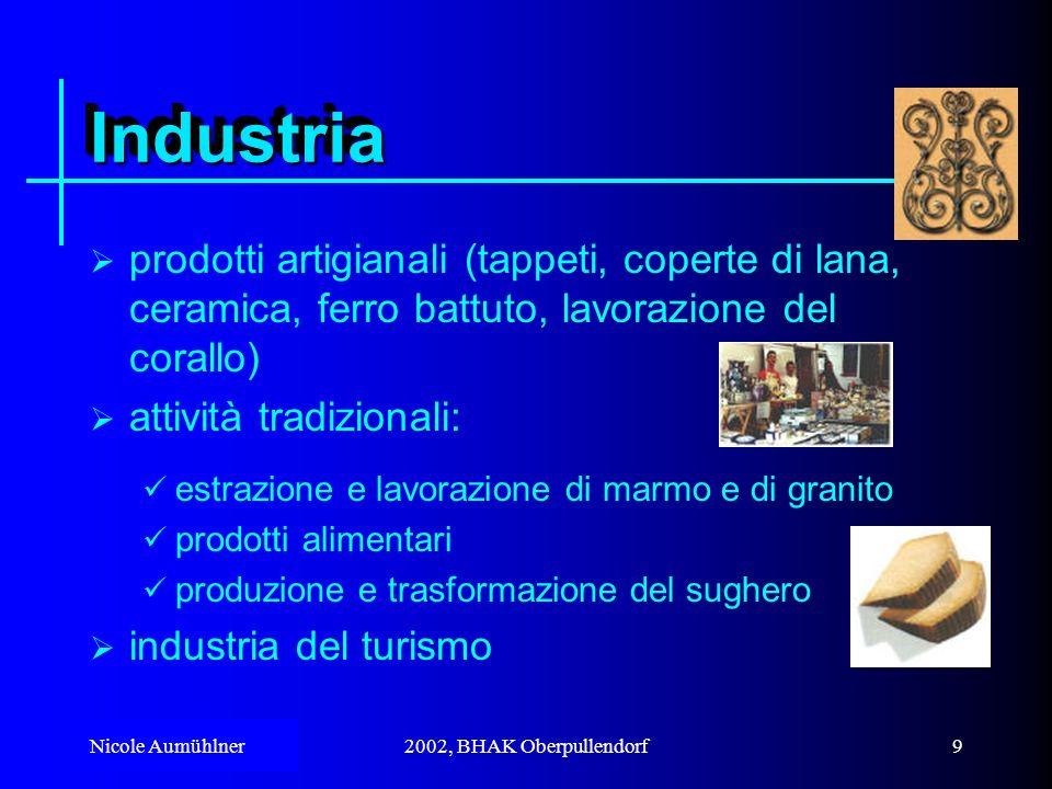 Industria prodotti artigianali (tappeti, coperte di lana, ceramica, ferro battuto, lavorazione del corallo)