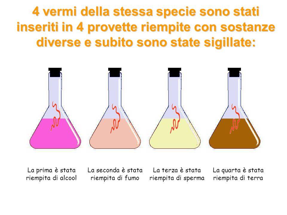 4 vermi della stessa specie sono stati inseriti in 4 provette riempite con sostanze diverse e subito sono state sigillate: