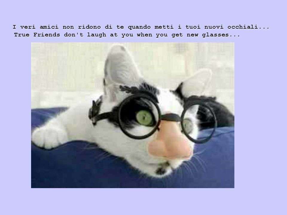 True Friends don t laugh at you when you get new glasses...