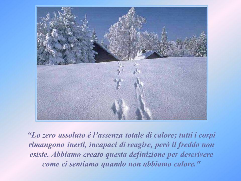 Lo zero assoluto é l'assenza totale di calore; tutti i corpi rimangono inerti, incapaci di reagire, però il freddo non esiste.