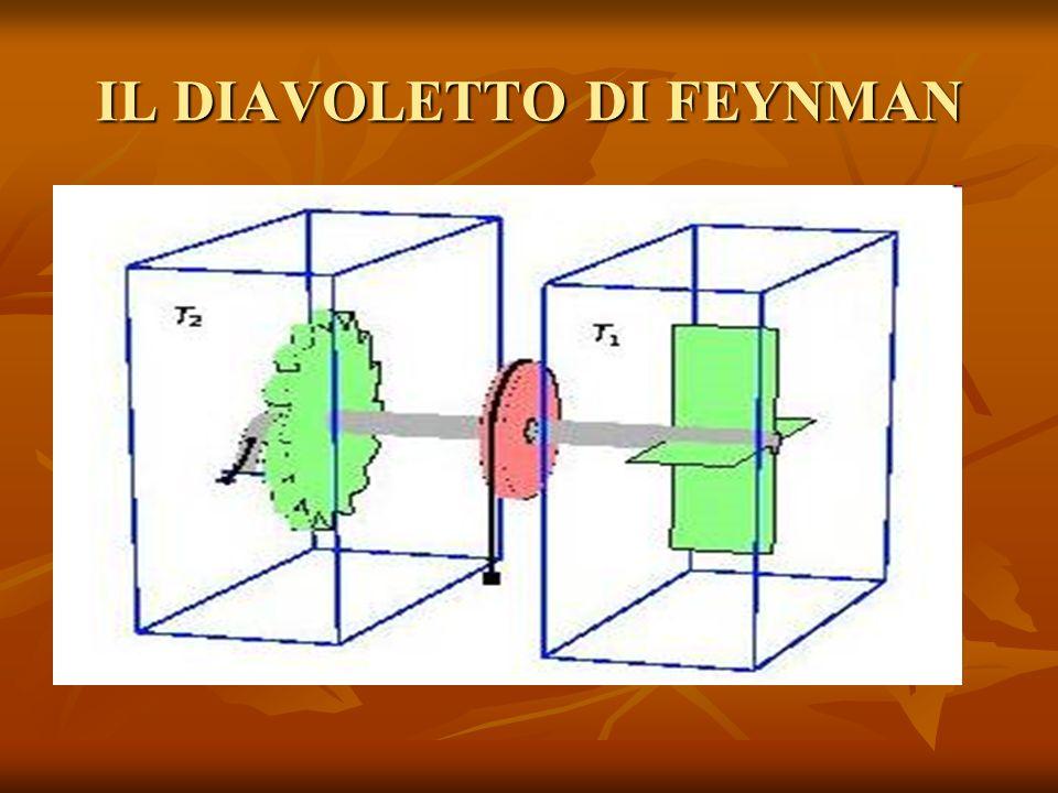 IL DIAVOLETTO DI FEYNMAN