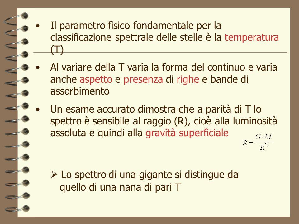 Il parametro fisico fondamentale per la classificazione spettrale delle stelle è la temperatura (T)