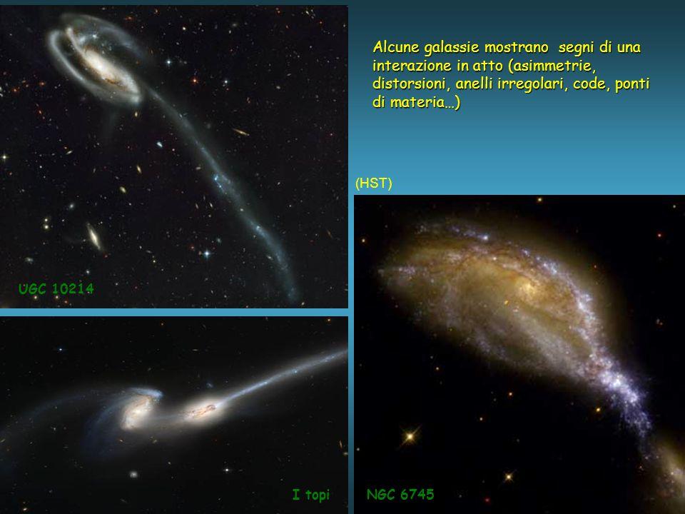Alcune galassie mostrano segni di una interazione in atto (asimmetrie,