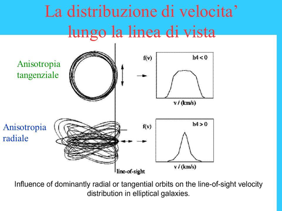 La distribuzione di velocita' lungo la linea di vista
