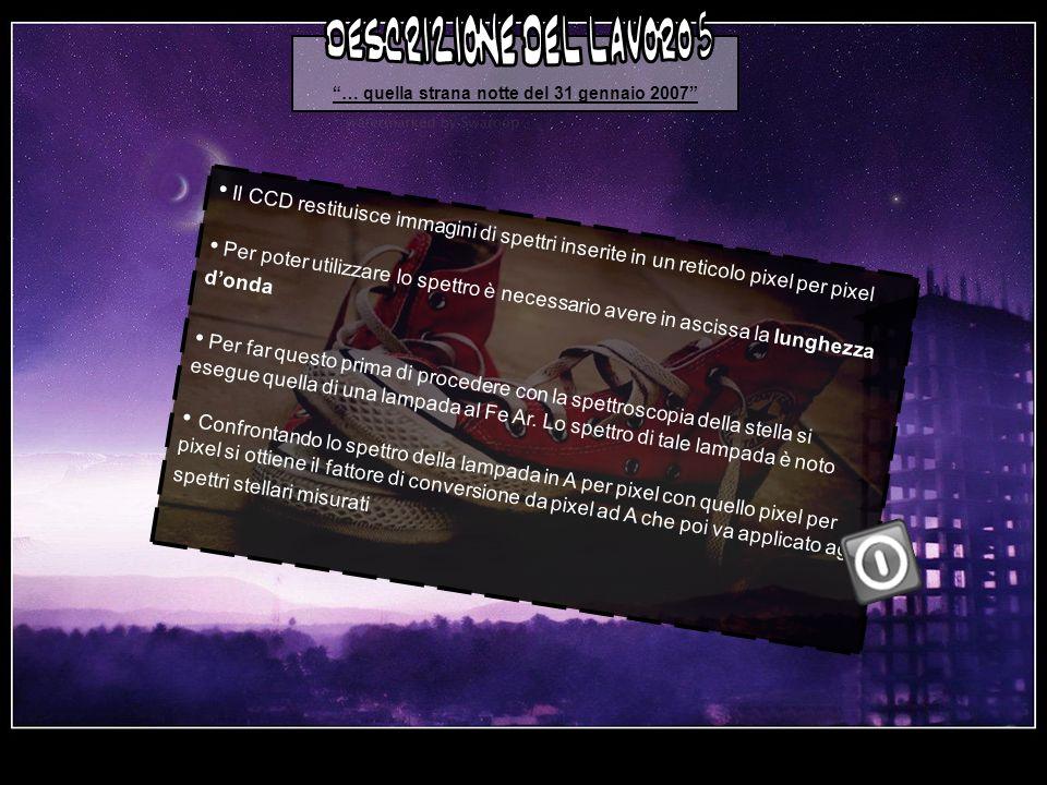 … quella strana notte del 31 gennaio 2007 descrizione del lavoro 5