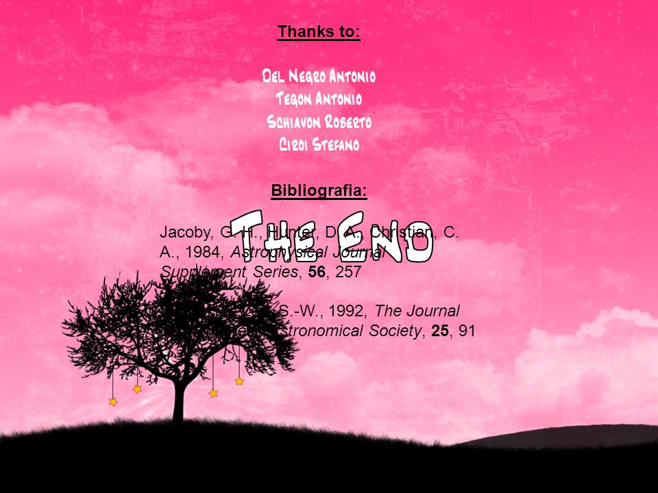 The End Thanks to: Del Negro Antonio Tegon Antonio Schiavon Roberto