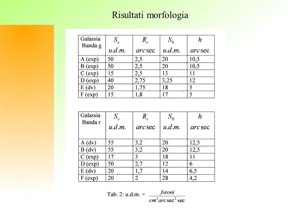 Risultati morfologia