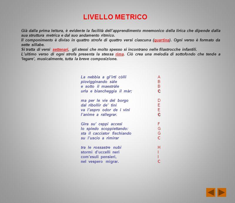 LIVELLO METRICO